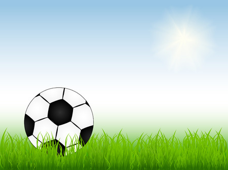 vector illustration of soccer ball on the field Stock Vector - 4294188
