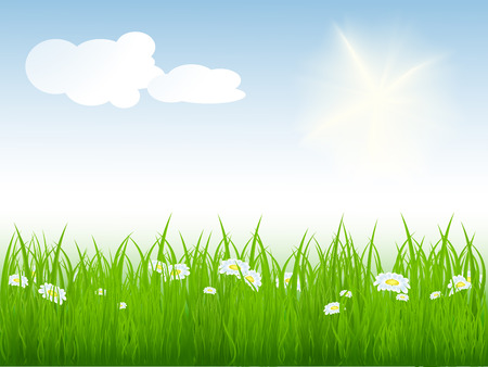 vector illustration of summer bright meadow. No mesh used Stock Vector - 4344757