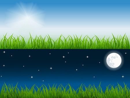 night and day: day and night vector scene on th fresh meadow. No mesh used