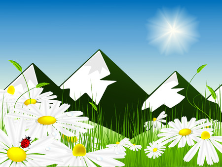 vector illustration of bright meadow over mountain view Stock Vector - 4557947