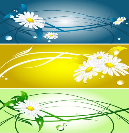 abstract summer banners with chamomiles and drops Stock Vector - 6071021
