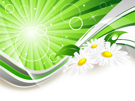 abstract summer background with  chamomiles and copy space