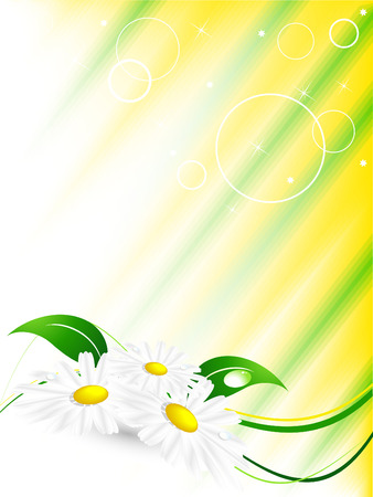 abstract summer background with  chamomiles Stock Vector - 6648531