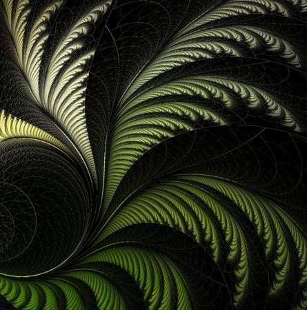 fractal background: leaf of fern, fractal.
