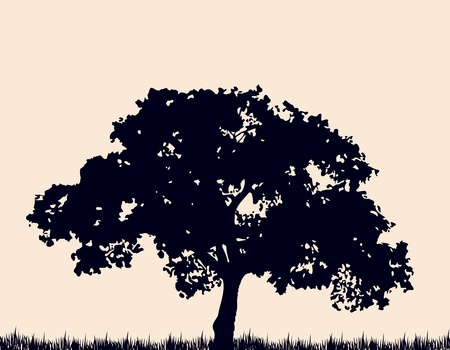 Silhouette of tree with grass   Vector