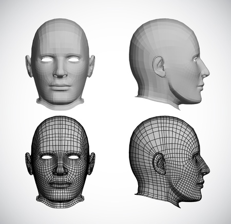 linear: Set female heads  Vector