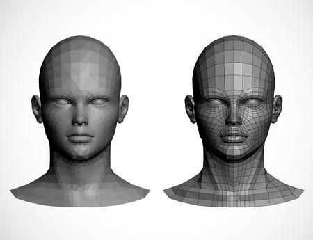 chin: Female heads  illustration