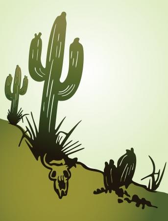 Cactus saguaro   Vector