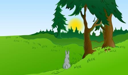 rabbit hole: Hares in the wonderland
