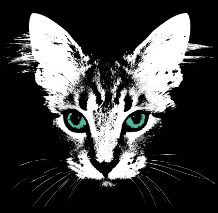 close up face: Head of a cat with green eyes  Vector