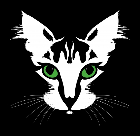 face close up: Head of a cat with green eyes  Vector