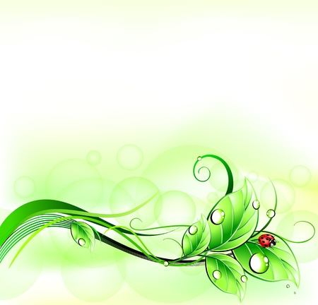Blur green background with ladybirth  Vector