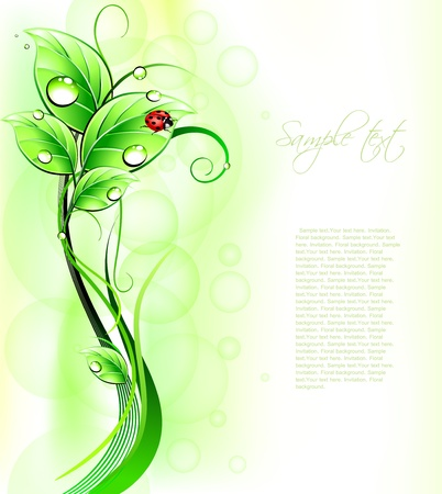 Blur green background with ladybirth  Vector Vector