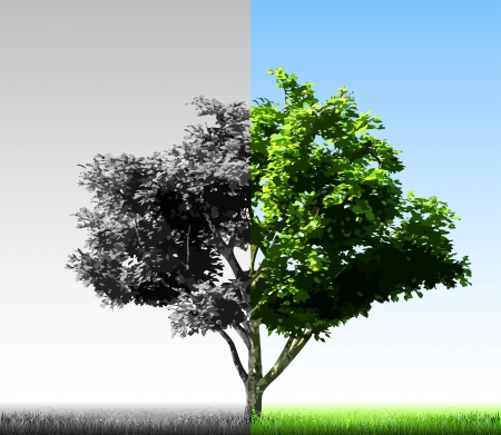 Two colorful halves of the tree  Vector Stock Vector - 15121200