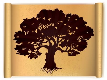 foglie di quercia: Albero sul vecchio rotolo di carta Vector