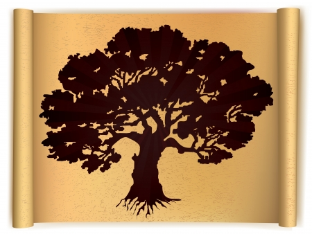 Tree on old scroll paper  Vector Vector