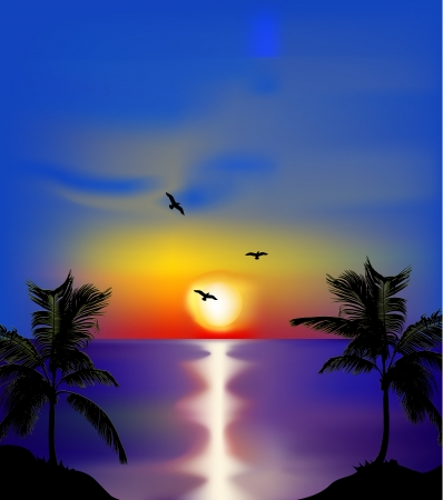 Sunset on sea with palms and birds  Vector Vector