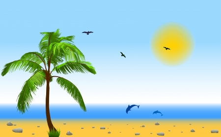 Meer und Kokospalmen