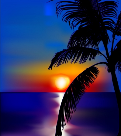 Sunset on sea with palm