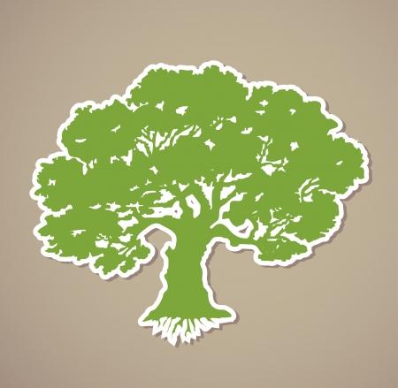 mango tree: Tree  Vector