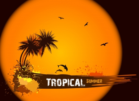 Summer background with palms  Vector Vector