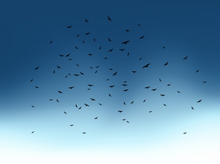 Flock of flying birds on blue sky  Vector Stock Vector - 15890635