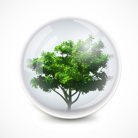 photosynthesis: Tree in a bubble  Vector ecology background