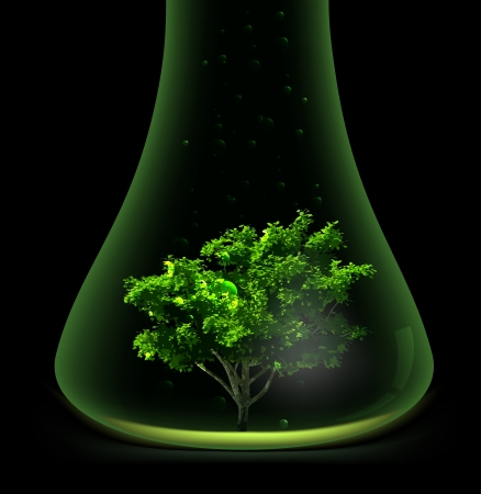 Tree in glass retort  Vector