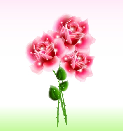 marriage bed: Bouquet of pink roses  Vector