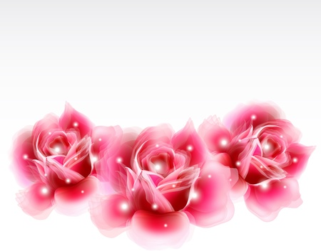 marriage bed: Pink roses Floral Design Elements  Vector