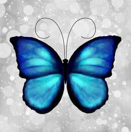 morpho: Butterfly In Blue Tones Illustration