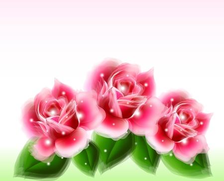 Pink roses Floral Design Elements Stock Vector - 16489115