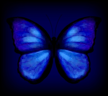 Blue butterfly Stock Vector - 16519227