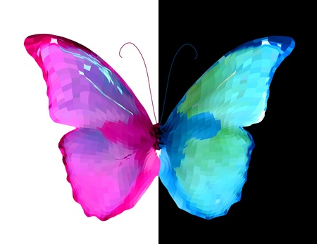 Pink and blue half of the butterfly    Illustration