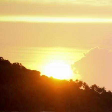 Landscape  Sunset Stock Vector - 17037382