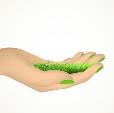 raise the thumb: Hand holding green grass  Vector