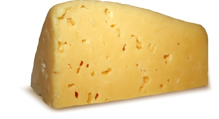 cheez: Piece of cheese