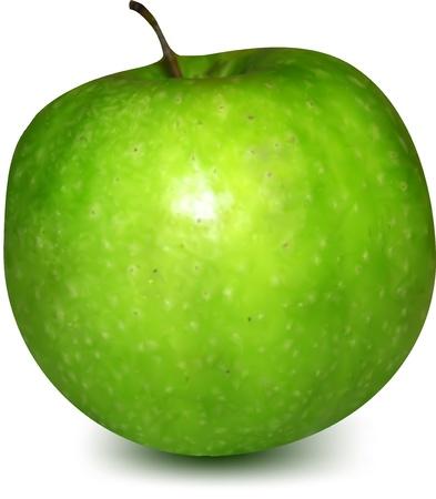 Green Apple  Vector Vector
