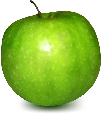 gr�ne apfel: Green Apple Vector