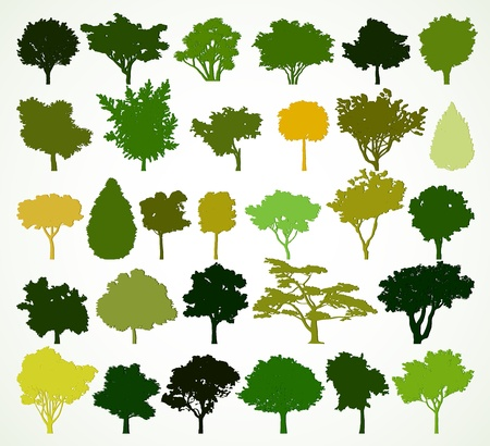 Silhouettes of trees  Vector set Vector