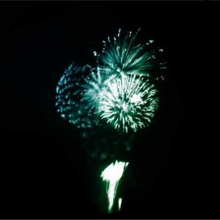 Fireworks in the night sky. Vector illustration
