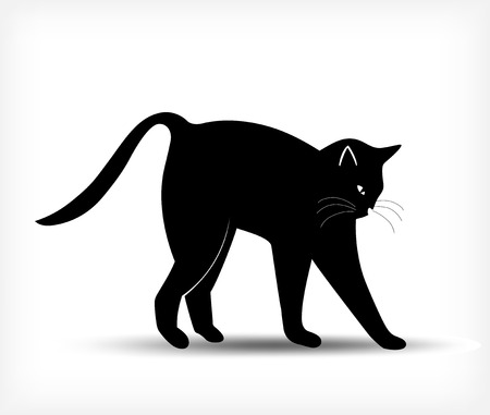 cat tail: Silhouette of a black cat. Vector illustration
