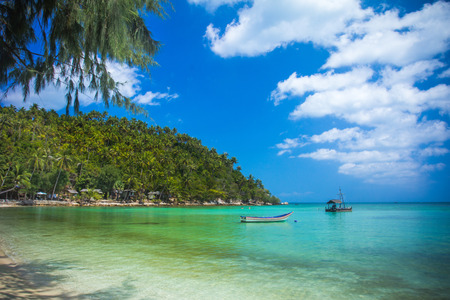 phangan: Tropical beach at Koh Phangan - nature background  Thailand Stock Photo