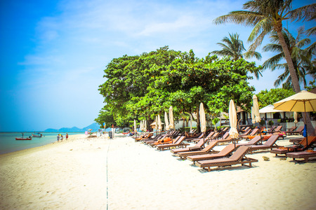 Empty sunbeds on the tropical paradise beach in Koh Samui photo