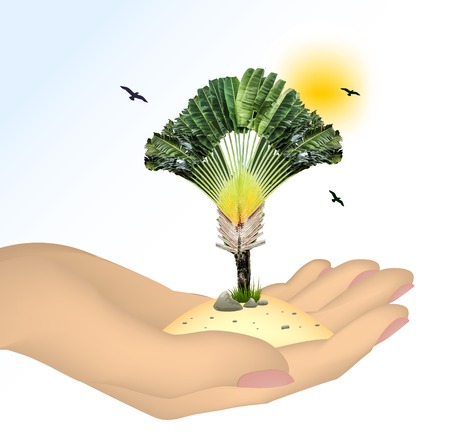 Plant in a hand isolated on white background. Vevtor illustration Vector
