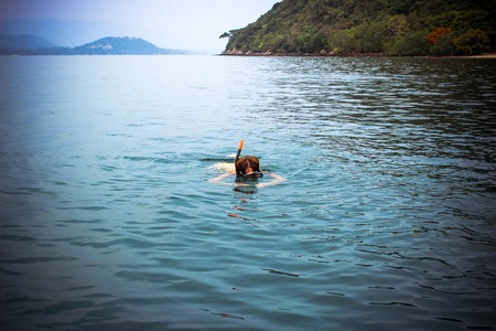 Young woman swimming by coral reef in transparent tropical sea. photo