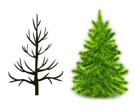branched: Vector trees trunk and branched green Christmas tree