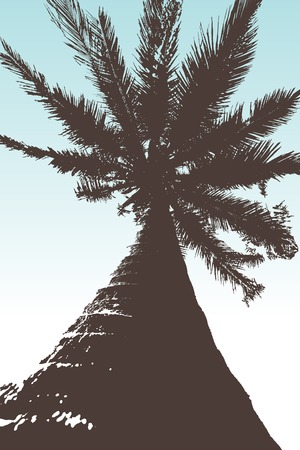 Bottom-up view of a vector palm tree with blue sky