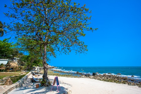 Beautiful tropical beach with trees and sunbeds in Koh Samui photo