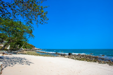 sunbeds: Beautiful tropical beach with trees and sunbeds in Koh Samui